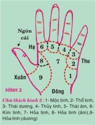 H2 ngon tay
